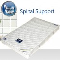 Spinal Support